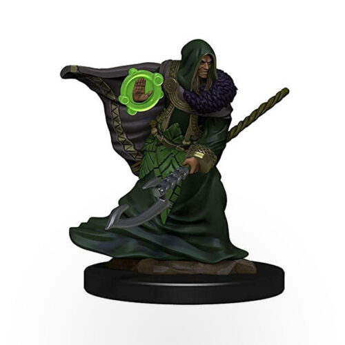 Dungeons & Dragons: Icons of the Realms - Premium Miniatures - Elf Male Druid